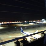 羽田空港での国内線から国際線への乗り継ぎ シンガポール旅行記vol.3